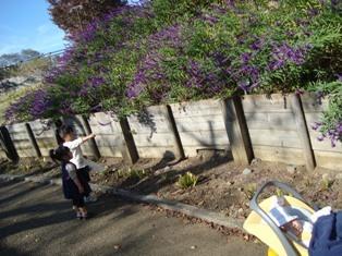 画像2011 033.jpg